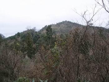 大平山15