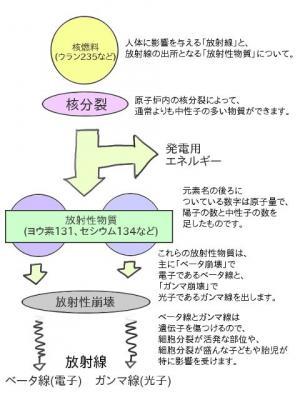 20110325.jpg