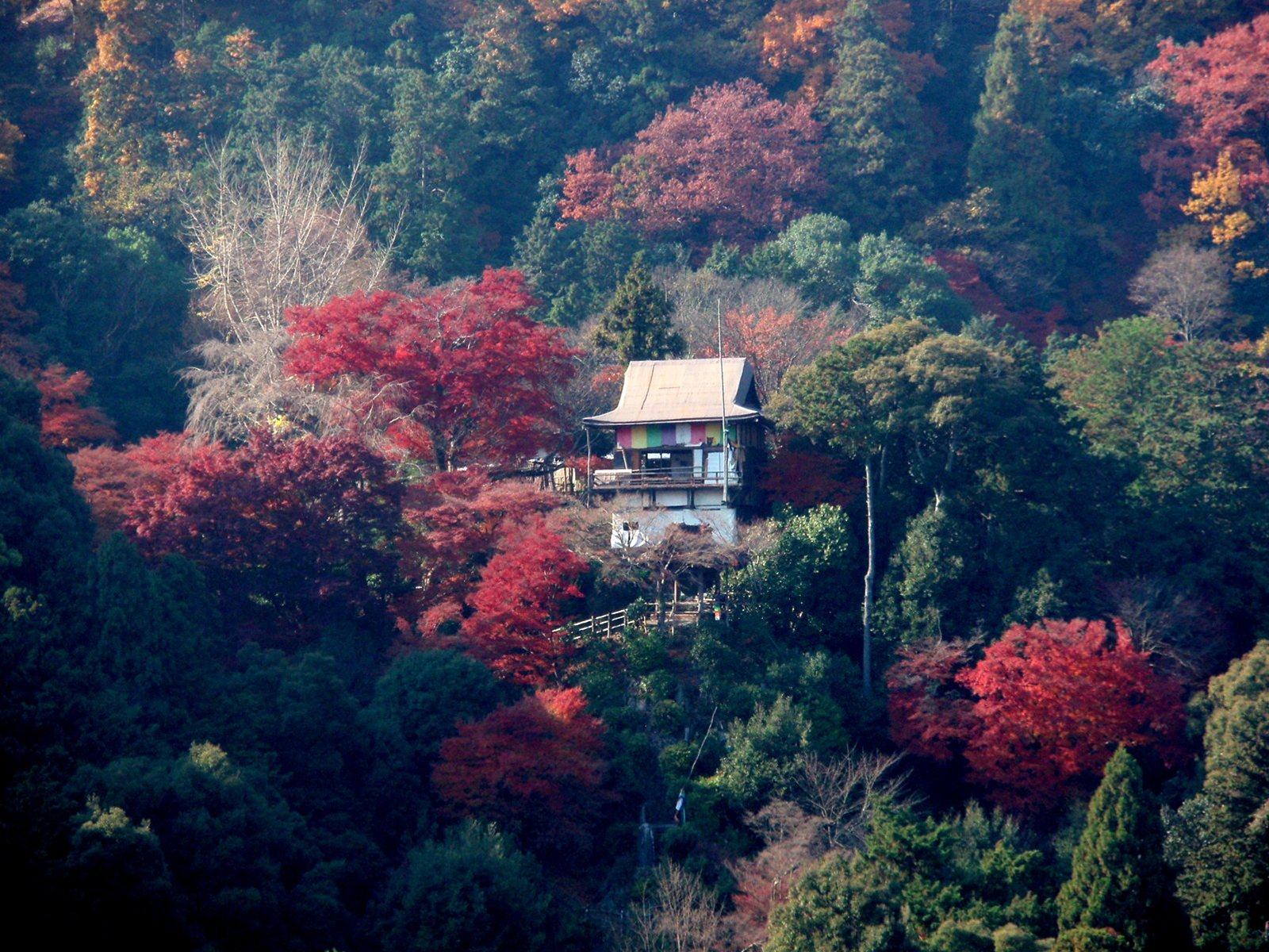 Senkouji_R.jpg