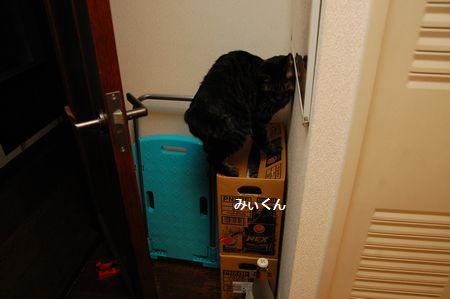 20131007kotetsumiikun.jpg