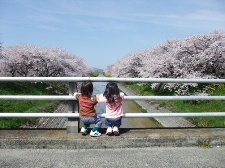 ブログ 桜大中公園 001