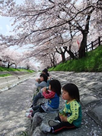 ブログ 桜大中公園 018