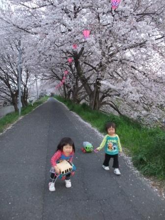 ブログ 桜大中公園 039