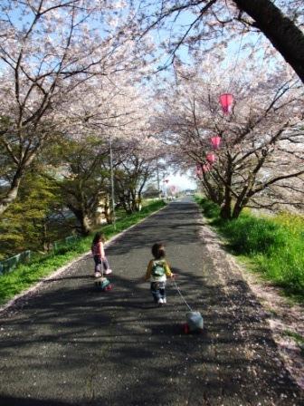 ブログ 桜大中公園 044