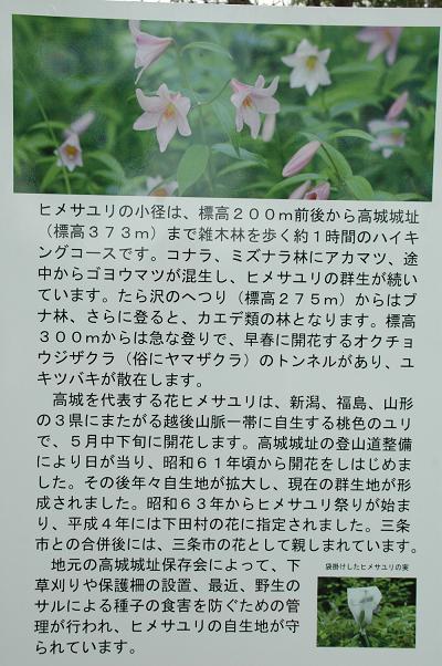 DSC_0595s_20110515204138.jpg
