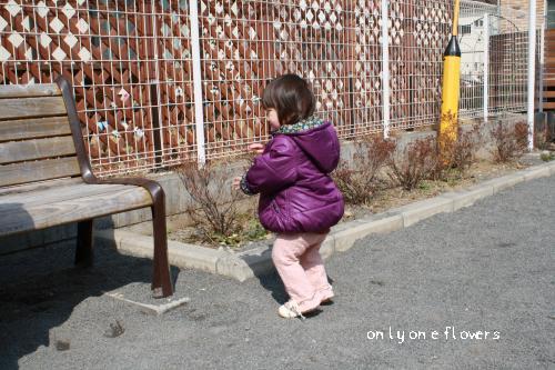 じわりじわりと歩く まの 6
