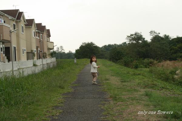 ある穏やかな秋の日のお散歩風景Ⅰ
