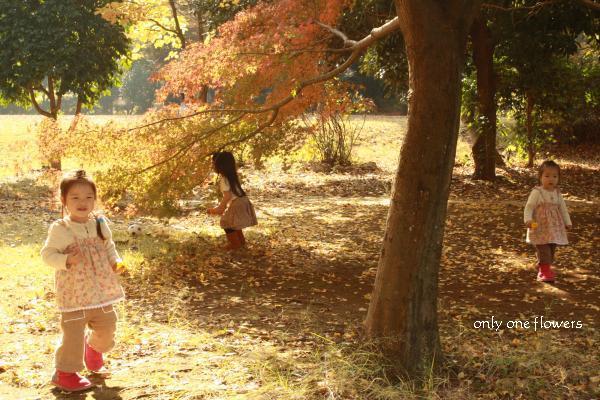 紅葉した森の妖精みたいな子どもたち