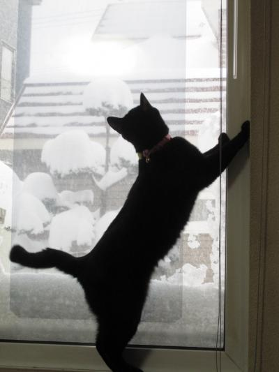 雪女、立つ!