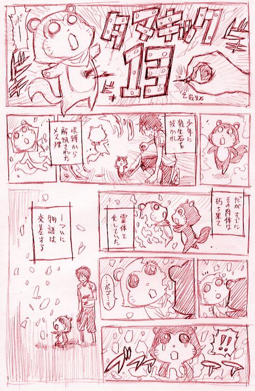 タヌキ 13
