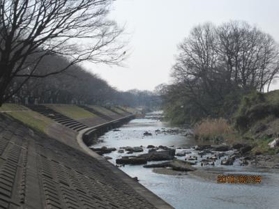 1002022+柳瀬川の冬景色・054_convert_20100226034359