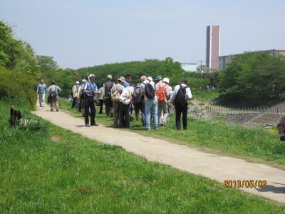 20100503+・柳瀬川・004_convert_20100504110714