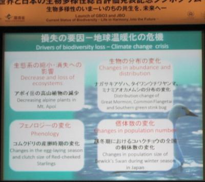 20100509シンポ025_convert_20100514010859