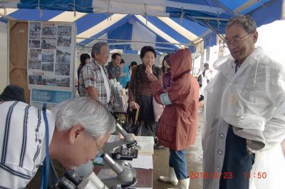 20100523 プランクトン観察「+012_convert_20100524224506
