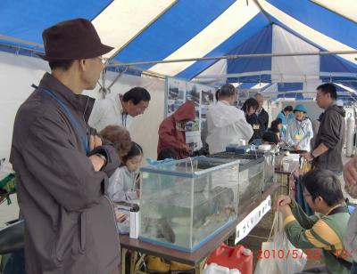 20100523 魚の展示+016_convert_20100524232355