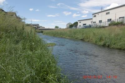 20100527 水のある空堀川+005_convert_20100528235852
