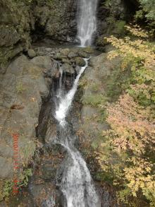2011118何気ない滝ッ+002_convert_20101123124246
