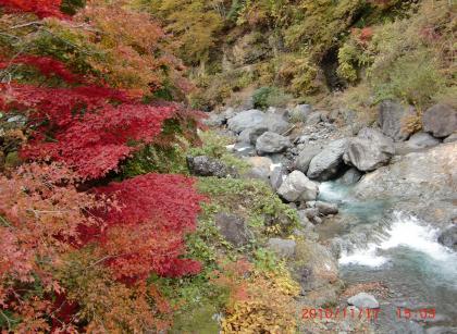 2011118山の紅葉+019_convert_20101123131110