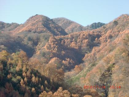 2011118山梨の山並060_convert_20101123140559
