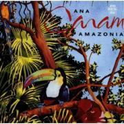 amazonia 1991