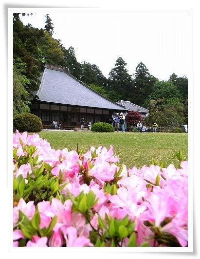 2011-05-06 薬王寺 006