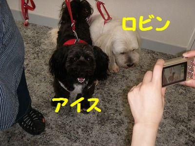 002_20100712140303.jpg
