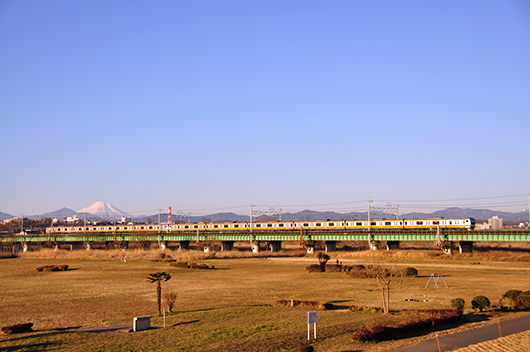 20100126多摩川233