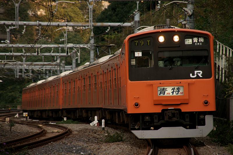 DSC06342r.jpg