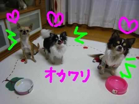 IMG_13057.jpg