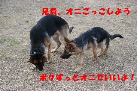 IMG_6444.jpg