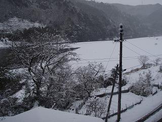 雪2010