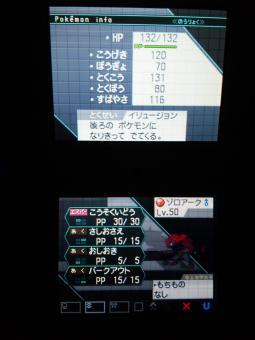 WHF4_20110131210943.jpg