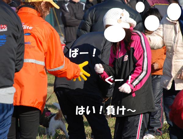 DSC_7817.jpg