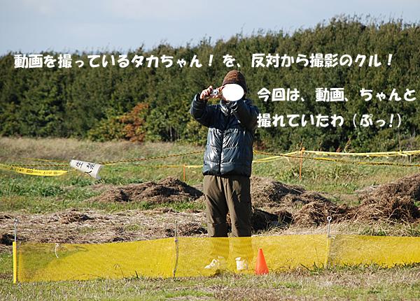 DSC_8587.jpg