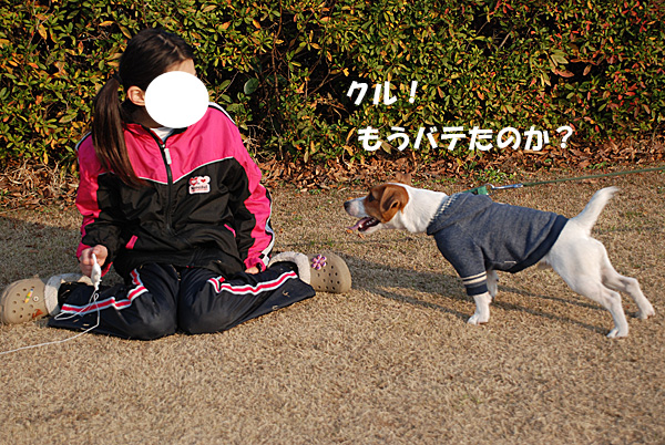 DSC_9276.jpg