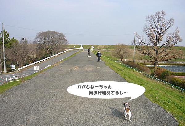 P1070981.jpg