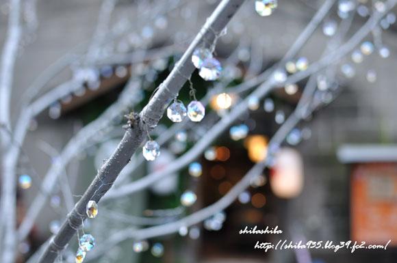 願いが叶う木