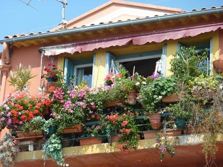 花の咲く家
