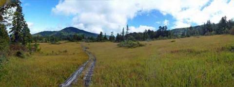 尾瀬の湿原パノラマ