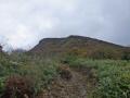 登山道からの鬼面山