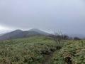 大将旗山への登山道