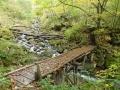 幕滝への道-1