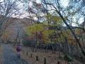 歌ケ浜周辺の紅葉