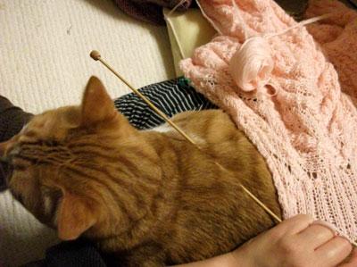 編めないよ。。。