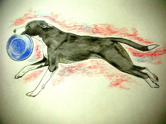 running molly