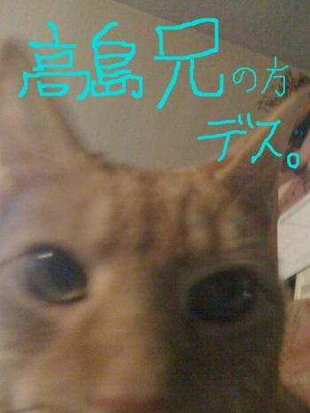 ani1_con.jpg