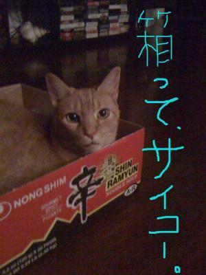 box1_convert_20100112134350.jpg