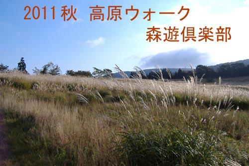 2011高原ウォーク001