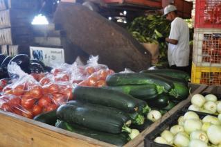 新鮮で安いお野菜