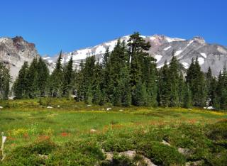 Panther meadow and top of Mt Shatsa